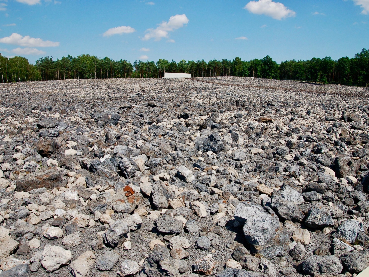 The remains of the Bełżec extermination camp in Poland, which the Nazis demolished before leaving.