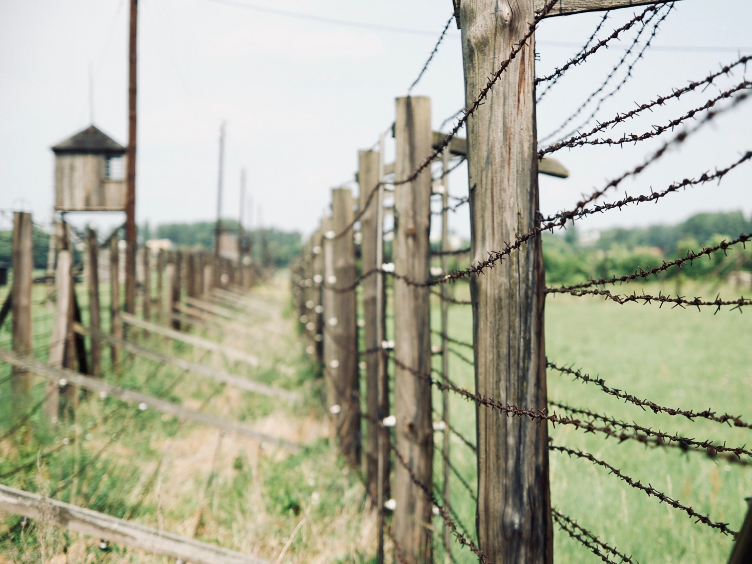 Barbed wire fence at former concentration camp Majdanek, near Lublin, Poland.