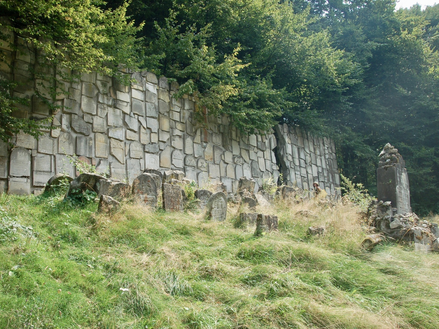 The Jewish cemetery of Kazimierz Dolny, Poland, in a forest on a hill outside the center.