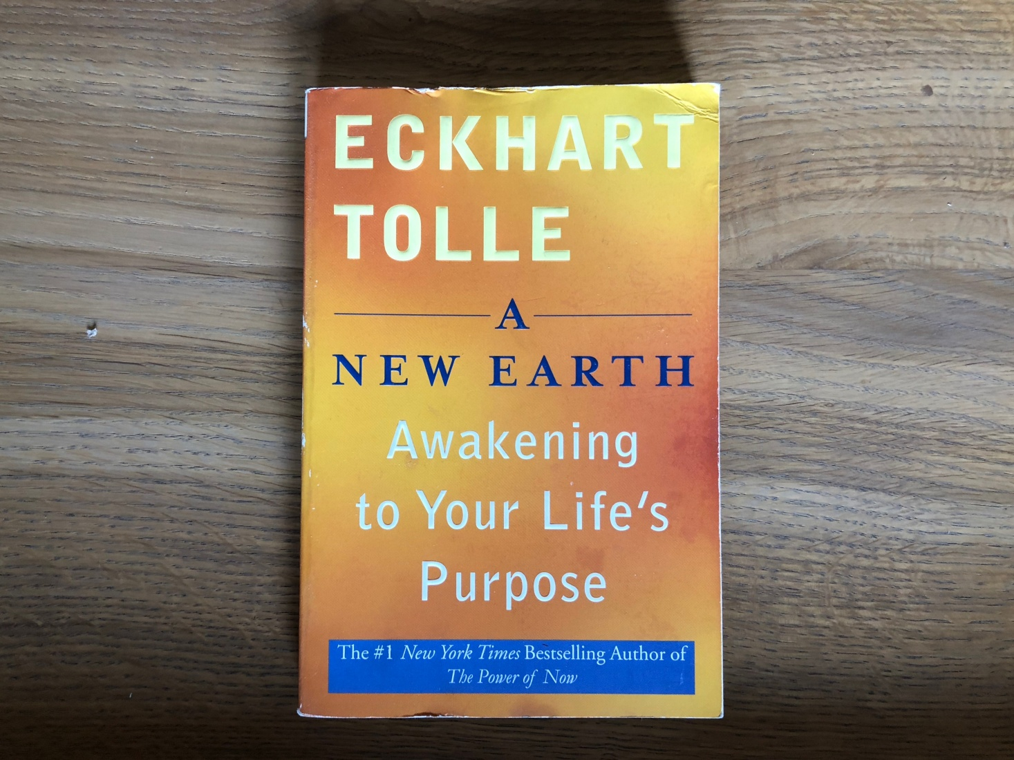Cover of Eckhart Tolle book A New Earth: Awakening to You rLife's Purpose.