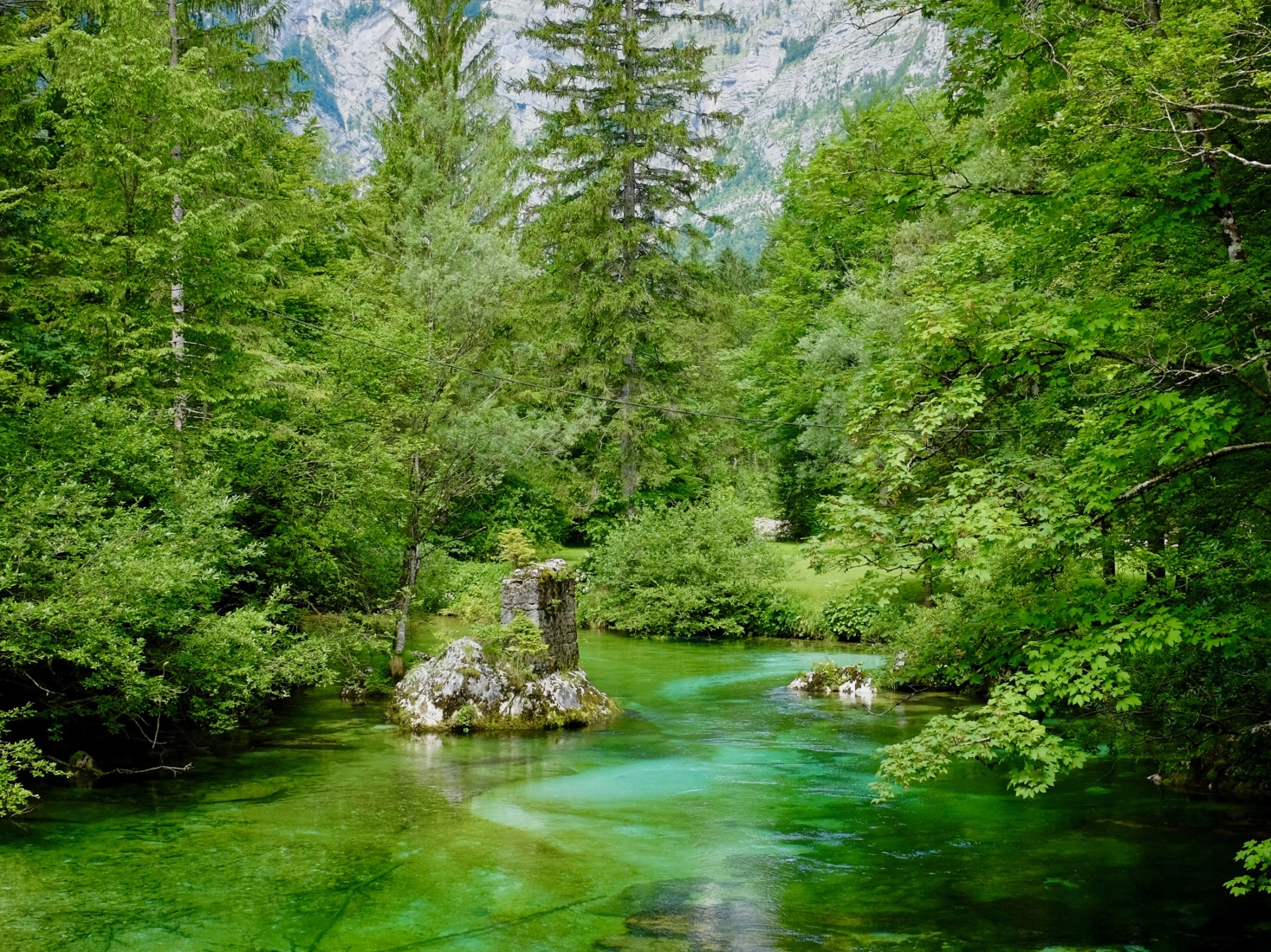 Sava Bohinjka river in Slovenia, on the western end of Lake Bohinj.