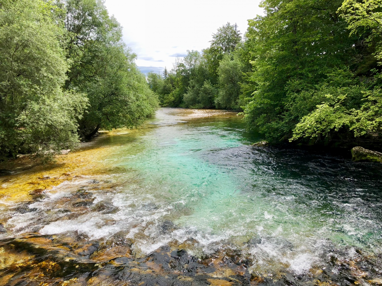 Blue-green water of Slovenian river Sava Bohinjka.