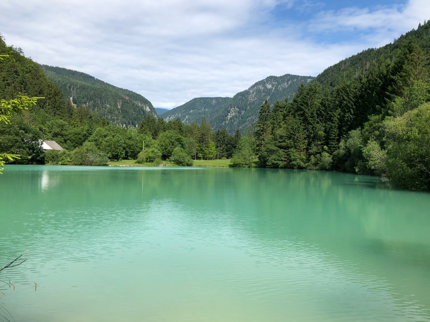 Green, emerald, colored water at Lake Bled, Slovenia.