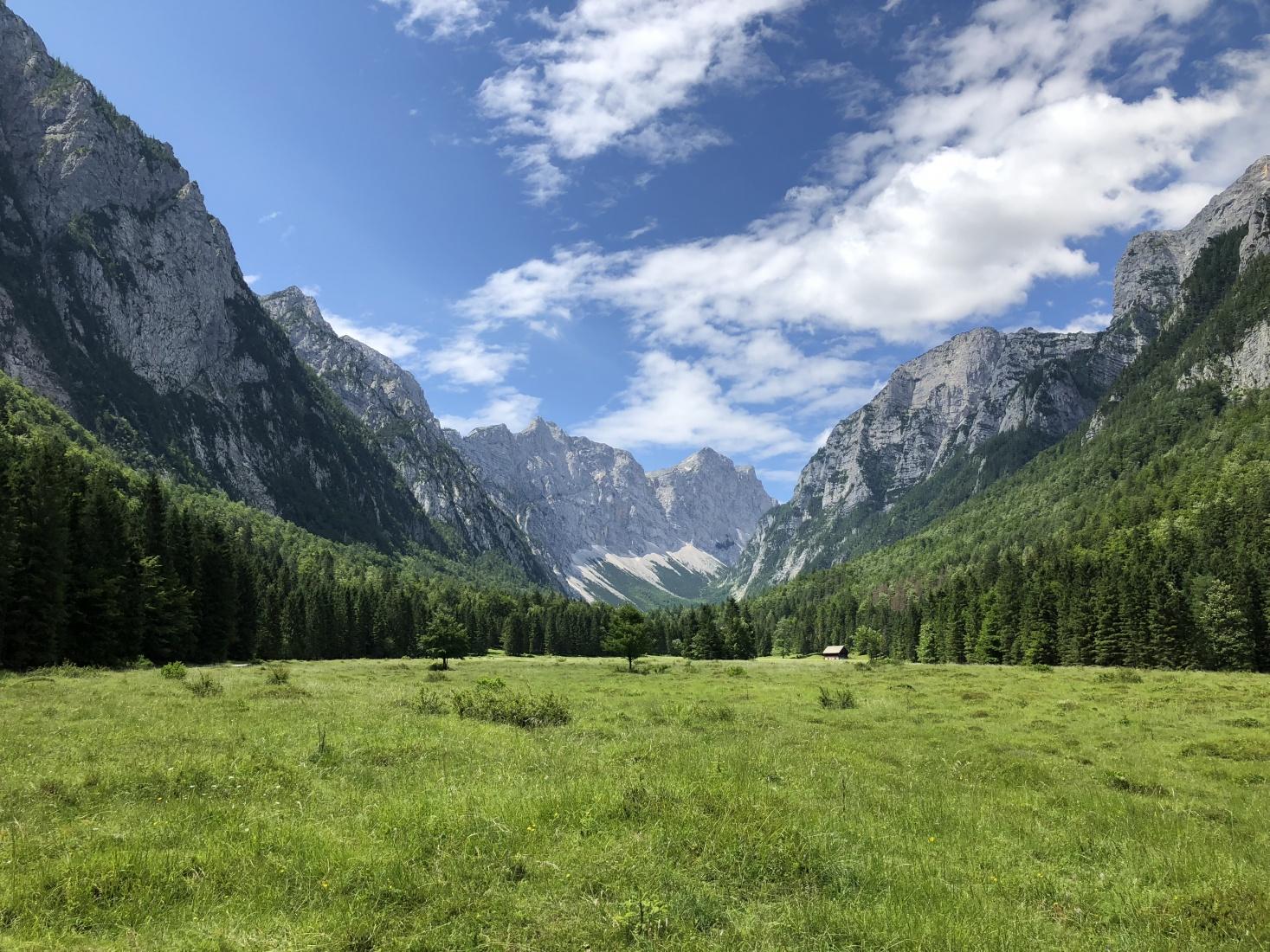 A green meadow and mountain-top photo near the center of Triglav National Park, Slovenia.