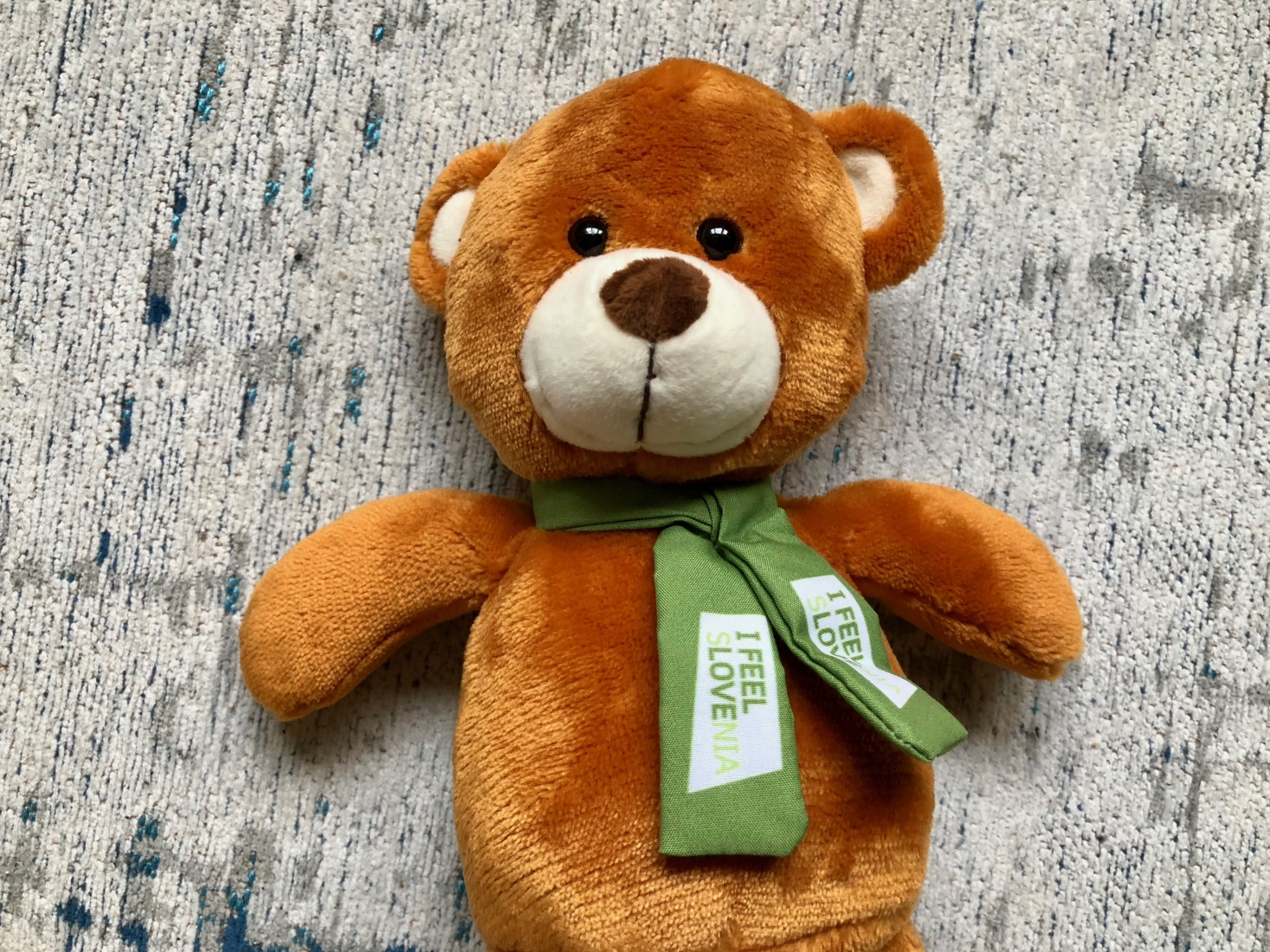Teddy bear with the Slovenian slogan