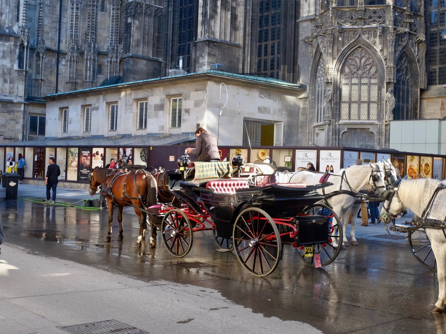 A horse-drawn carriage waiting outside St. Stephen's Cathedral in Vienna, Austria.