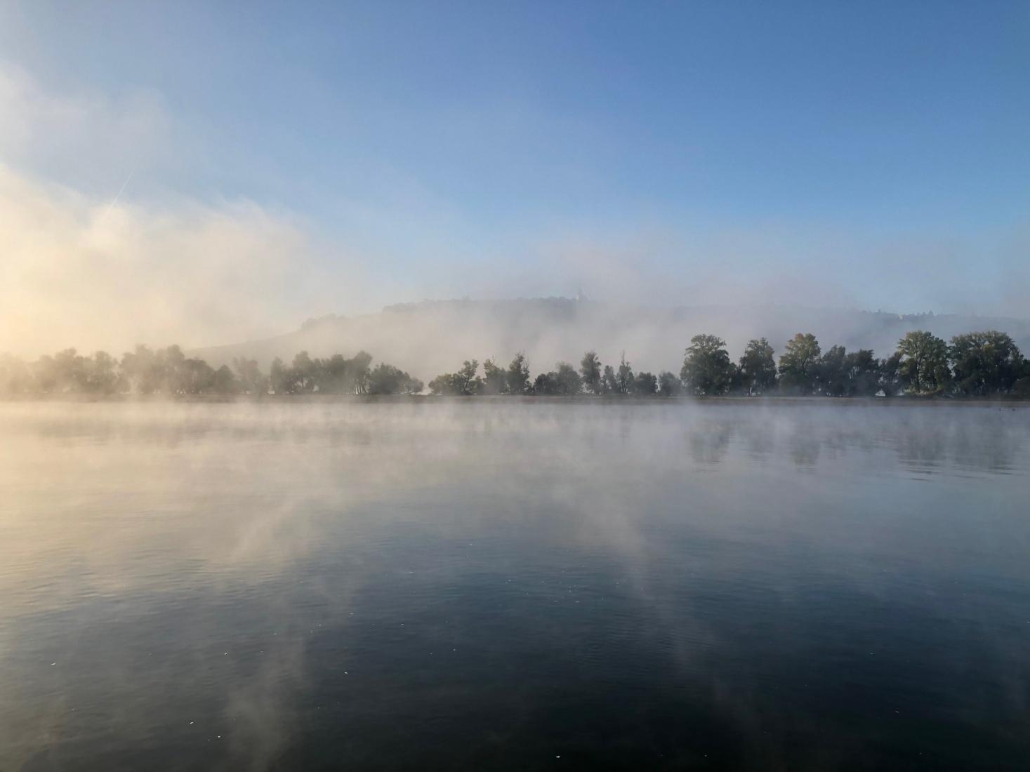Mist rising off the Rhine river.